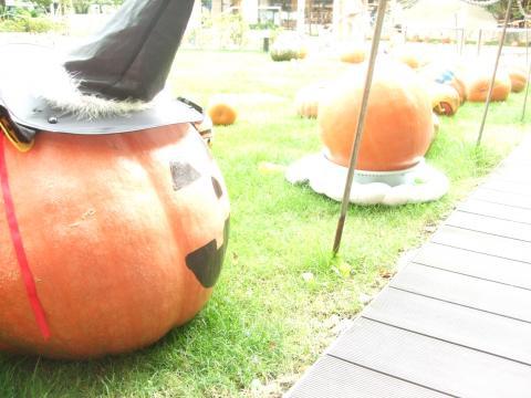らら★かぼちゃまつり02